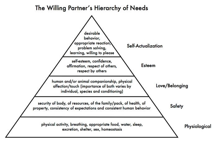 The Willing Partner's Hierarchy of Needs