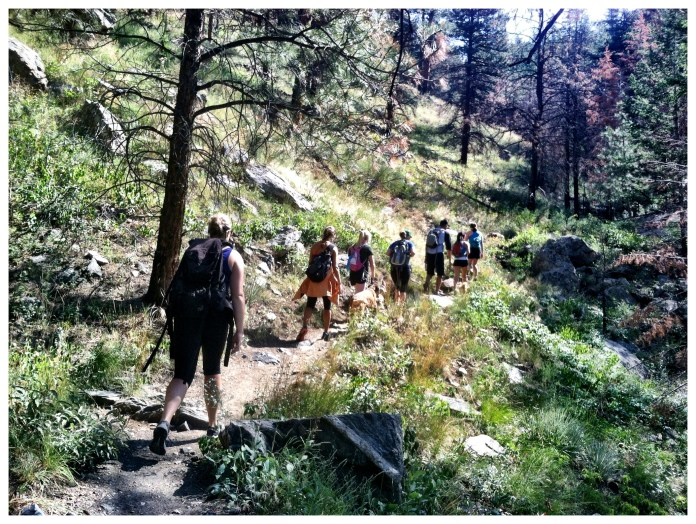 Vet students go hiking.